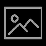 Revival Fires